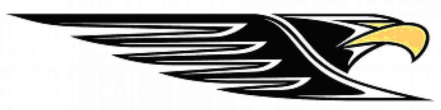 cropped-thumbnail_eagle-head2.png